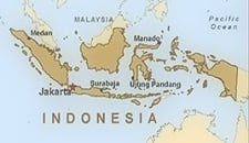 Local Representation in Indonesia