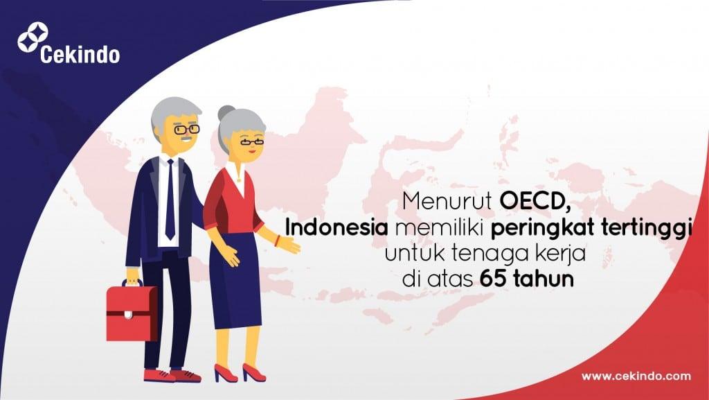 sdm dan rekrutmen di indonesia