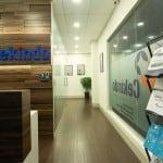 Cekindo Office