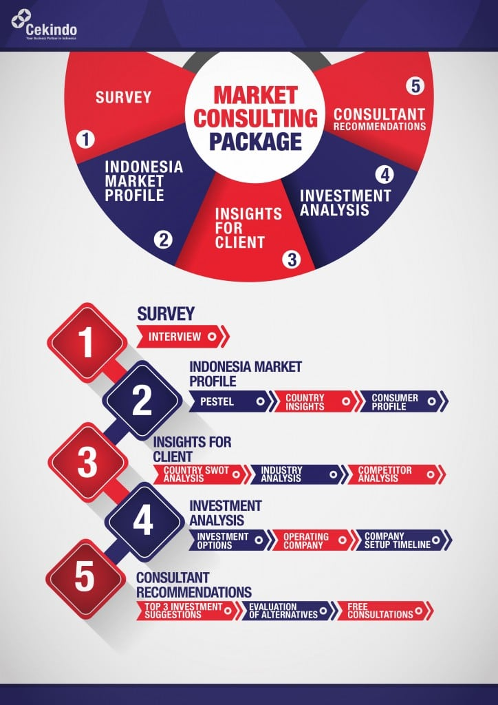 market consulting package from cekindo