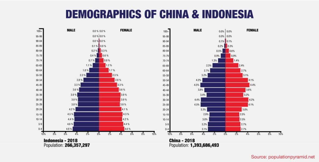 comparison of demographics in China and Indonesia