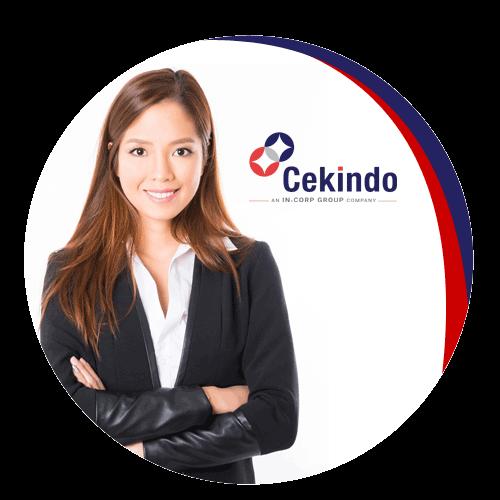 Cekindo services