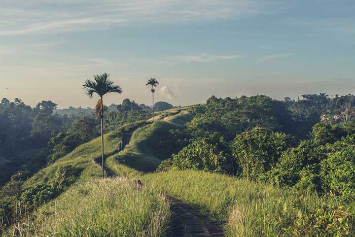 moving to bali