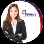 cekindo-service